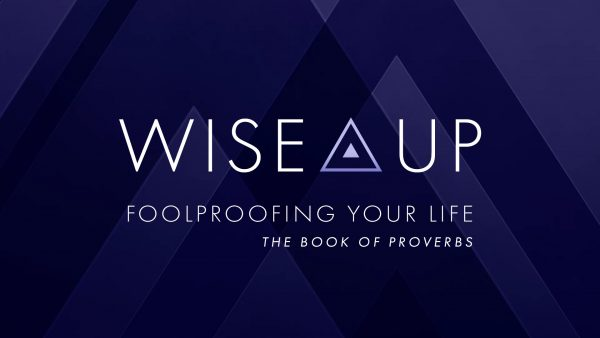 WISE UP! - What Do You Want? Image